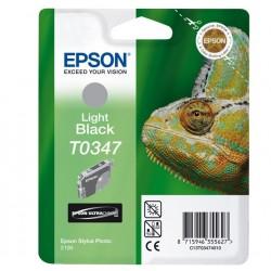 """Epson T0347 """"Caméléon"""" Cartouche d'encre pigmenté Gris 440 pages"""